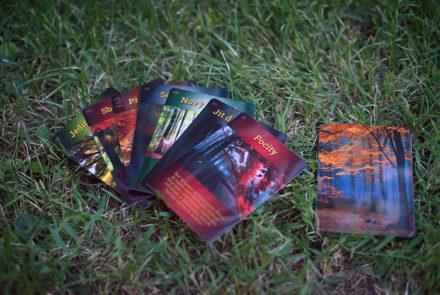 Sebepoznávací karty